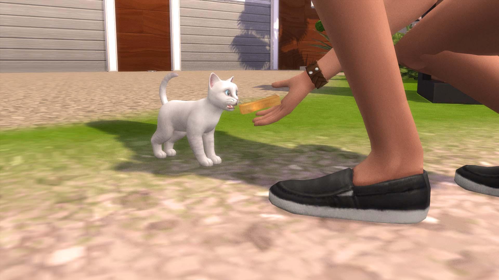 Los gatitos no crecen en Los Sims 4